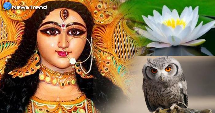 Photo of नवरात्रि के दौरान दिख जाए ये संकेत, तो समझिए देवी माँ की है कृपा, मिलेगा धनलाभ