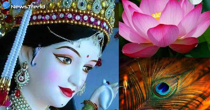 नवरात्रि के दिनों में घर में लाए यह सामान, पूरे साल रहेगी बरकत