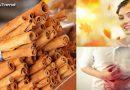 घर में रखा दालचीनी(Cinnamon) है वंडर स्पाइस, जानिए दालचीनी के फायदे और नुक्सान