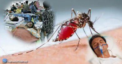 तेज़ी से फैल रहा है डेंगू का बुखार, जानिए क्या है इसका लक्षण और बचाव