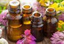 इन 6 फूलों से होते हैं स्वास्थ्य संबंधी ये बड़े फायदे, जानिए कौन कौन से फूल हैं आपके लिए रामबाण?