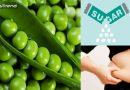 हरी मटर के इन फायदों से होंगे अनजान, घर पर बना सकते हैं मटर की खीर