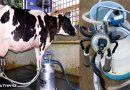 दूध निकालने की मशीन