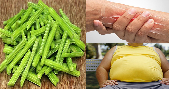 सहजन की सब्जी में इतने सारे प्रोटीन, विटामिन और पोषक तत्व होते हैं जो आपको एक नहीं बल्कि 300 रोगों से बचा सकते हैं सहजन के फायदे