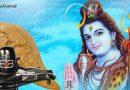 """भगवान शिव की पूजा में भूलकर भी ना करें """"शंख"""" का इस्तेमाल, यह है वजह"""