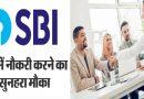 SBI में एक बार फिर मिल रहा नौकरी का मौका, साक्षात्कार होगा चयन का माध्यम