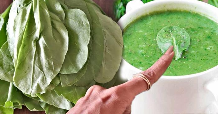 ठंडियों में घर पर बनाएं पालक का सूप, जानें इसको स्वादिष्ट बनाने की आसान विधि