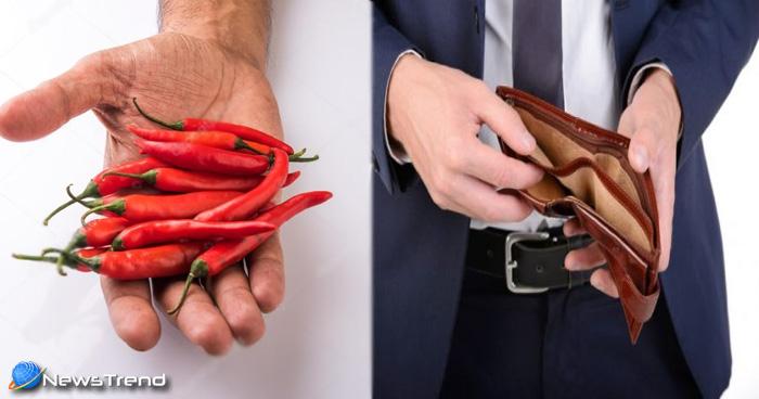 बनना चाहते हैं किस्मत के धनी, तो करें लाल मिर्च का यह एक टोटका, हर मनोकामना होगी पूरी