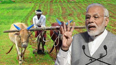 नए साल में किसानों के लिए अहम फैसला ले सकती है मोदी सरकार, जानें किन विकल्प पर हो रहा विचार