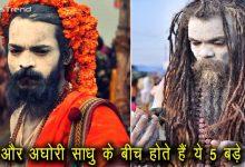 कुंभ 2019 : नागा और अघोरी साधु के बीच होते हैं ये 5 बड़े अंतर, जानकर हैरान हो जाएंगे आप
