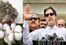 ये 5 चीजें बेचकर भारत से अरबों कमाता है पाकिस्तान, अब बढ़ सकती हैं पाक की कंगाली