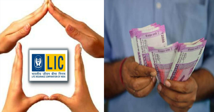 31 मार्च से पहले LIC की इस पॉलिसी में लगाएं पैसा, मिलेगा दोहरा मुनाफा