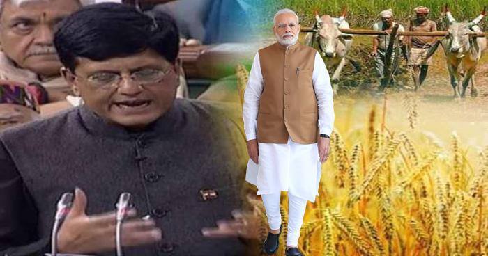 Budget 2019 : मोदी सरकार ने दिया किसानों को बंपर गिफ्ट, हर महीने सीधे खाते में आएंगे इतने रुपये