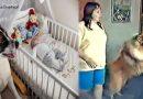 एकदम से भौंकने लगा डॉगी और मां को खींचकर ले गया बच्ची के पास,  मां के पैरों से खिसक गई जमीन
