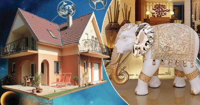 घर की इस दिशा में हाथी की मूर्ति रखना होता है बेहद ही भाग्यशाली