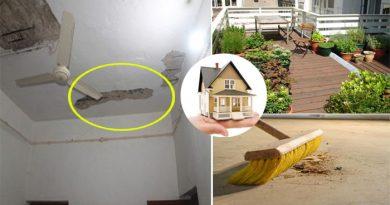 घर में इन चीजों को रखने से बढ़ता है वास्तु दोष, जानें कैसे सही कर सकते हैं घर का वास्तु