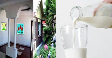 गाय के दूध को घर में छिड़कने से घर हो जाता है एकदम शुद्ध, जानें घर को पवित्र करने के उपाय