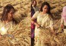 चुनावी समर में खेतों में गेहूं काटने उतरीं हेमा मालिनी, तो लोग बोलें 'मैडम, कितना नाटक करोगी?'