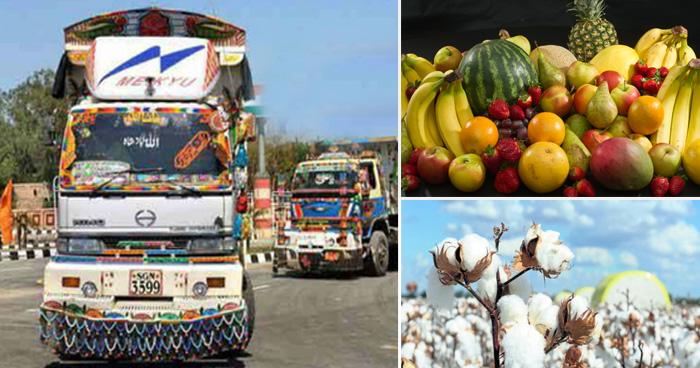 Photo of पाकिस्तान से आने वाले इन 10 सामानों के बिना भारत के लोगों का गुजारा है मुश्किल, आप भी जान लें
