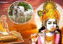भगवान कृष्ण जी के अनुसार, इंसान को भूलकर भी नहीं करना चाहिए  इन छह चीजों का अपमान