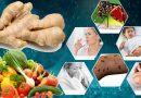 मानसून में कई बीमारियों से बचाती है ये 3 आयुर्वेदिक औषधियां, इस तरह करना चाहिए सेवन