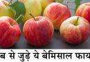 सेब से जुड़े बेमिसाल फायदे, आइये जानते है सेब के फायदे के फायदे