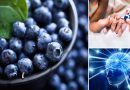 ब्लूबेरी खाने से दूर हो जाते हैं ये रोग, पढ़ें ब्लूबेरी के फायदे