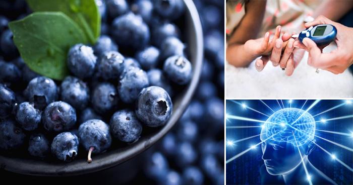ब्लूबेरी के फायदे