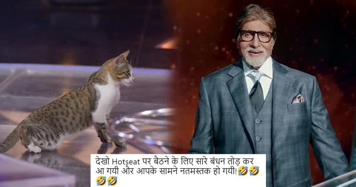Photo of KBC में अचानक अंदर घुस आई बिल्ली, फिर अमिताभ बच्चन ने किया कुछ ऐसा कि होने लगी तारीफें