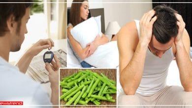 Photo of पुरुषों के लिए वरदान है 'सहजन', इसे खाने से नहीं होती ये 4 अंदरूनी बीमारियां, जानें इसके लाभ