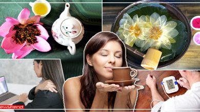Photo of एनर्जी बूस्टर की तरह काम करती है 'कमल की चाय', जानें इसे बनाने की विधि व इसके लाभ