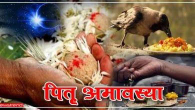 Photo of 17 सितंबर : पितरों का आशीर्वाद पाने के लिए सर्व पितृ अमावस्या के दिन करें ये विशेष उपाय