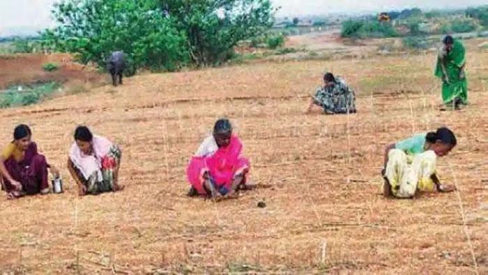 kurnool farmer found diamond