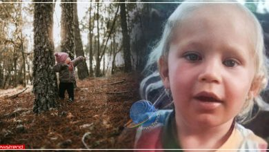one year old girl survived three nights in deadly forest in russia