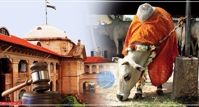 allahabad high court cow as national animal