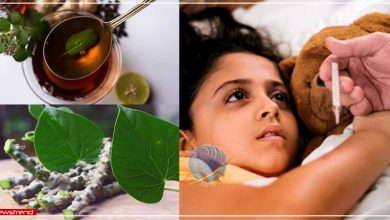 viral fever home remedies